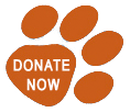 Donate to The Lost Dogs' Home